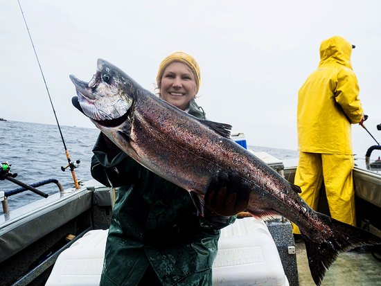 Angling Unlimited: Salmon