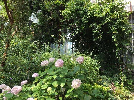 Siberian Botanical Garden