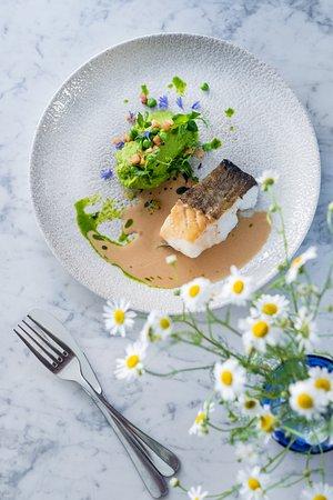 La Bottega Gastronomica: Cod with green pea purée, lardo and brown butter sauce