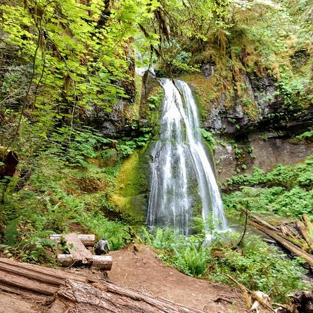 Spirit Falls (Cottage Grove) - UPDATED 2019 - All You Need