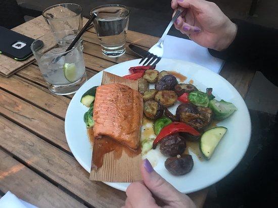 West Coast Grill + Oyster Bar: Lois Lake Steelhead Salmon & Wrappped in Cedar