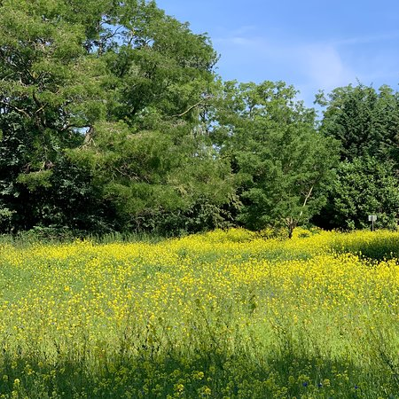 Beatrixpark (4)