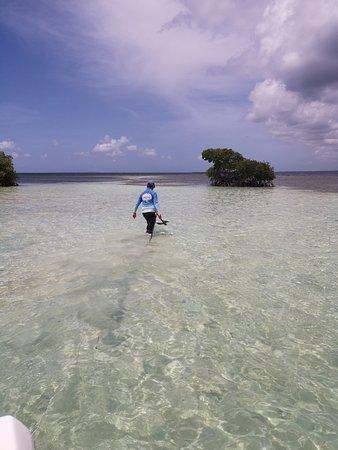 Quand on marche sur l'eau au beau milieu de la mer...