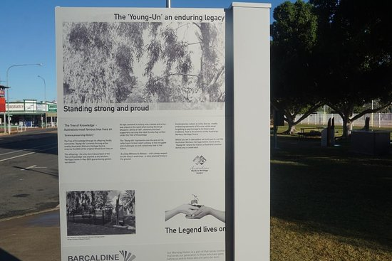 Tree of Knowledge Memorial: Great Information Boards