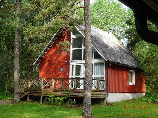 Central Finland照片