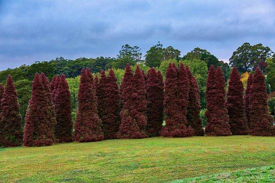 R.J. Hamer Arboretum