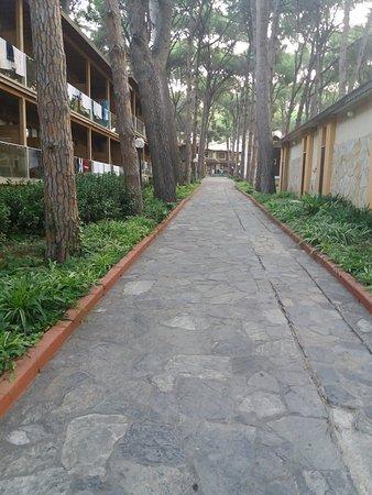 впечатления о Omer Holiday Resort