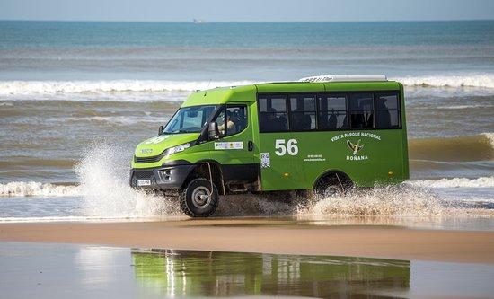Donana Visitas: Doñana Visitas. Playa