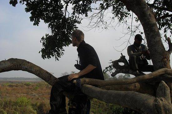 Mission Tiger Trek in Chitwan Nationak Park, 3 days hike