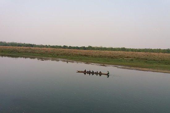 Chitwan Wildlife Tour Package, 2...