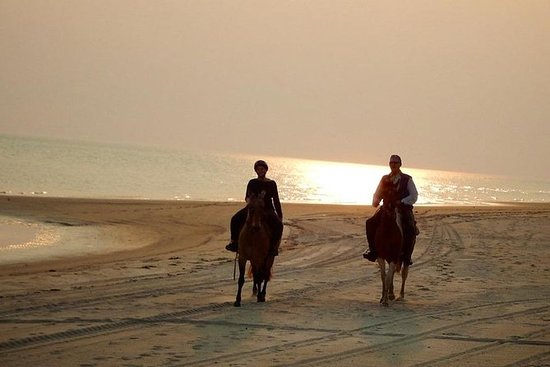 Beach Horseriding & Sunset