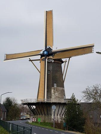 Veen, Paesi Bassi: Er zijn veel bezijnswaardigheden