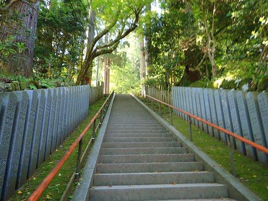 Mitokusan Sanbutuji Temple: 入口から本堂までの間にある石段です。この辺りはまだヤバい道のスタートですらないです。