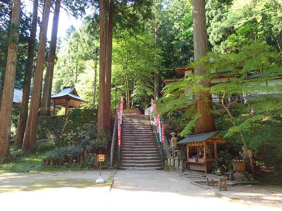 Mitokusan Sanbutuji Temple: 入口からすぐにこの素敵な空間に出ます。この上に本堂があります。ここまでなら400円の拝観料で入れます。時間にして5~10分です。