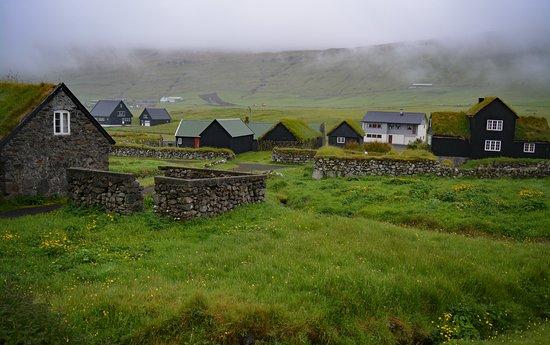 Viking Tour