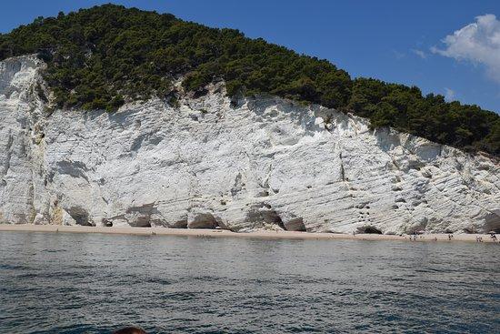 Desirèe coastal trips. Tour to visit the marine caves of Vieste 사진