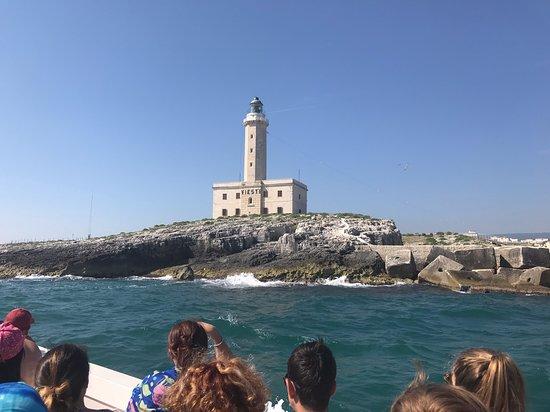 Desirèe coastal trips. Tour to visit the marine caves of Vieste: Faro di Vieste