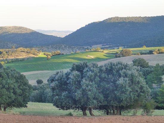 Un paisaje asombroso de camino a Inazares