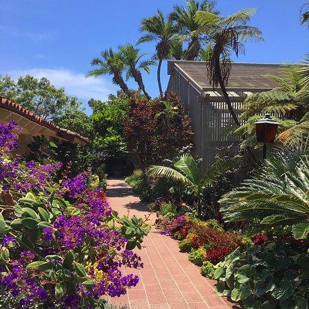Corona del Mar, CA: Garden Path