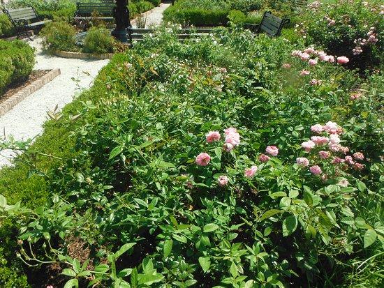 Charleston Noisette Memorial Garden