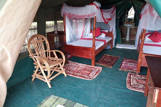 safarikotours& hotels