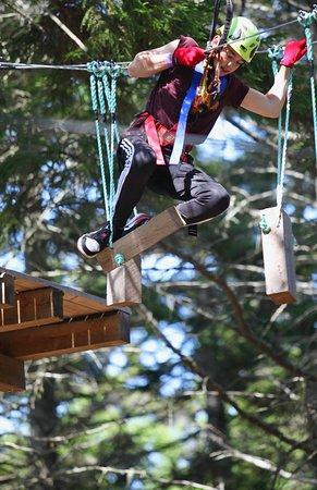 TimberTop Adventures: July Climbers