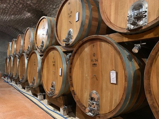 Cav. G.B. Bertani S.r.l.: wine celler