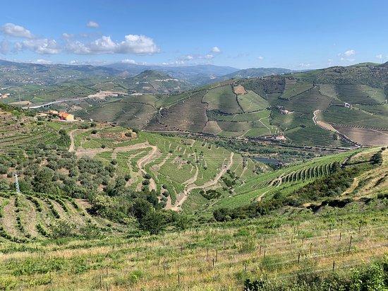 Vista das vinhas, de onde é possível ver o rio Douro