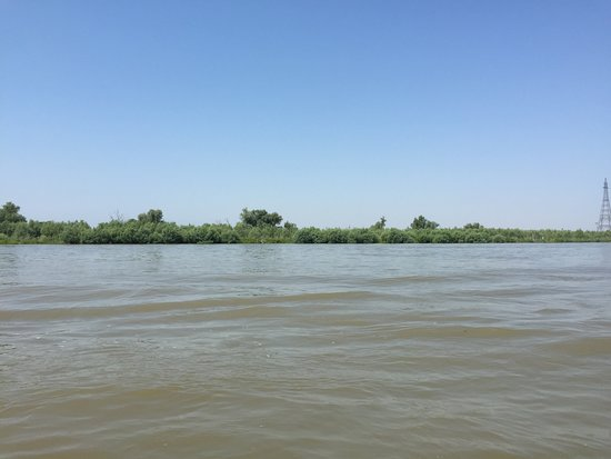 very close to Uzlina in the Delta