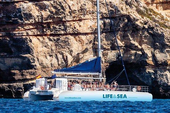 Life & Sea