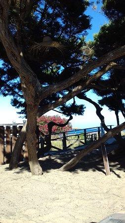Camping Cala Nova Bewertungen Fotos Preisvergleich Ibiza Santa