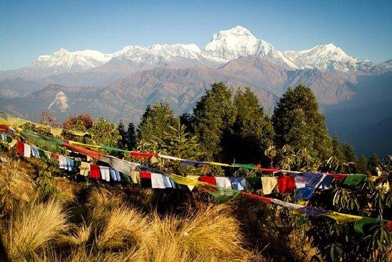 Bold Himalaya Treks and Travels Pvt Ltd
