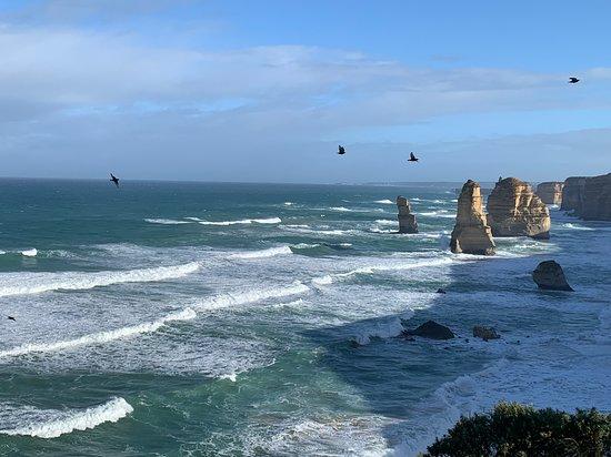 Small Group - 12 Apostles, Otways & Great Ocean Road Day Tour from Melbourne: Twelve Apostles