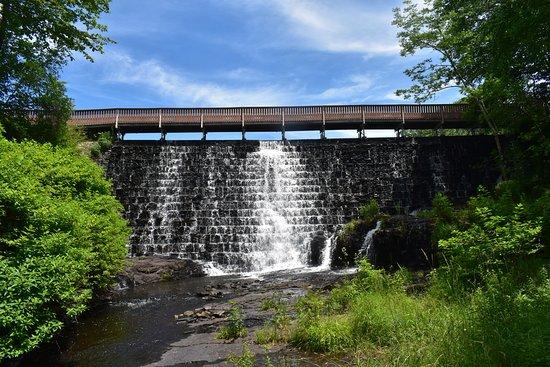 Leavitt Falls trail