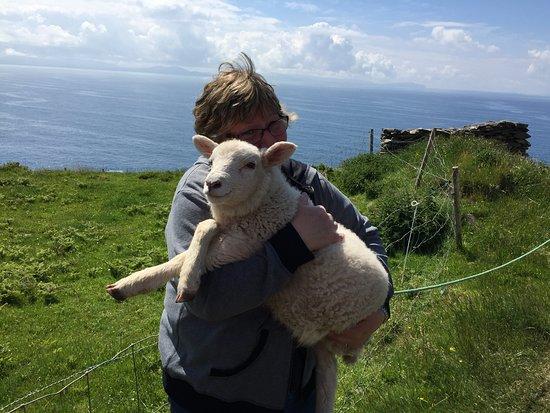 Holding a lamb - Slea Head