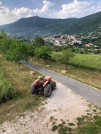 B&B Piana La Gatta: View from the terrace