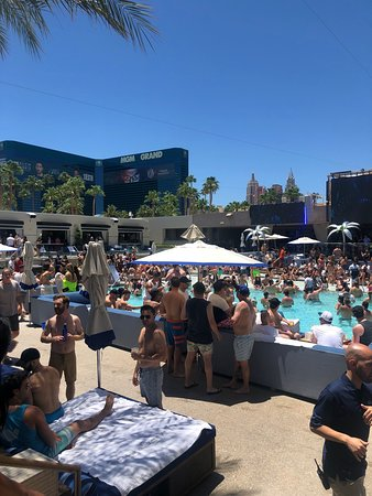 Dayclub Party Bus