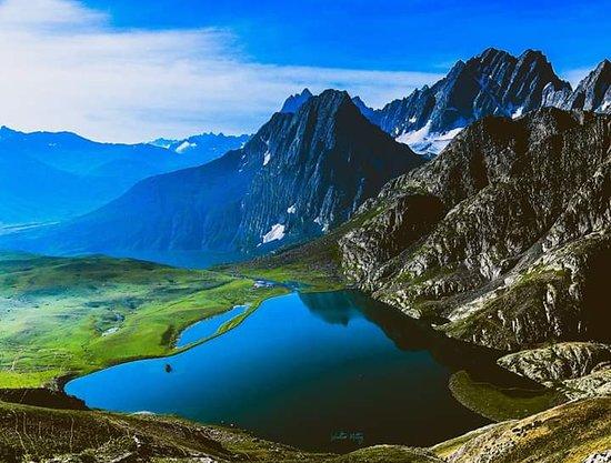 Himalayanhie