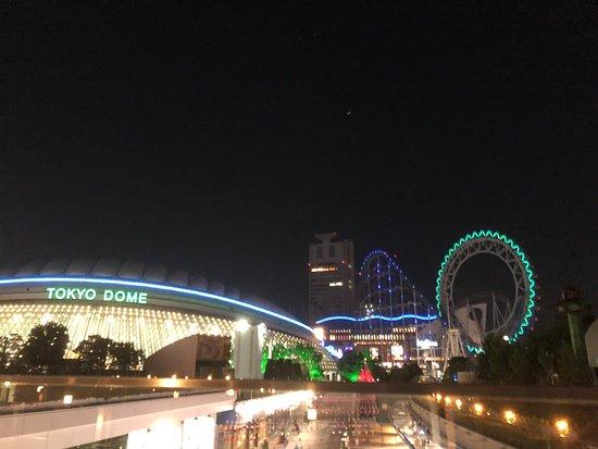 Tokyo Dome Hotel: 東京ドームホテル