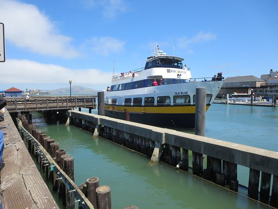 Blue & Gold Fleet, PIER 39 (San Francisco) - 2019 All You Need to