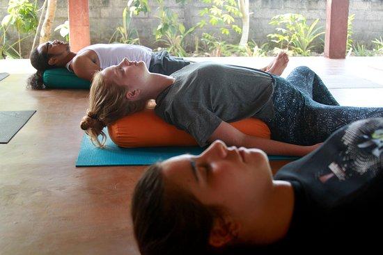 Bukit Bali Yoga