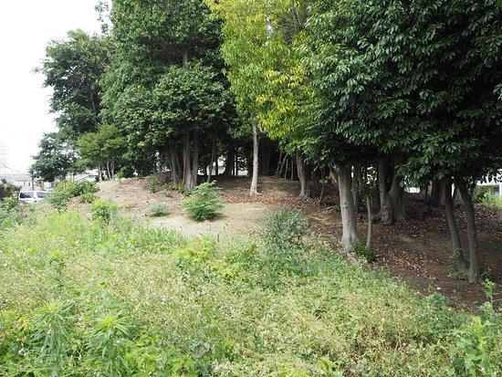 Zenemonyama Burial Mound