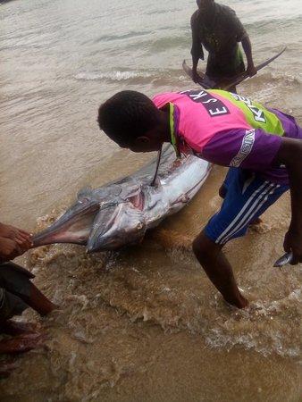 Ilha de São Tomé, Santo Tomé y Príncipe: Venham discubrir e aproveitar essa ilha leve leve