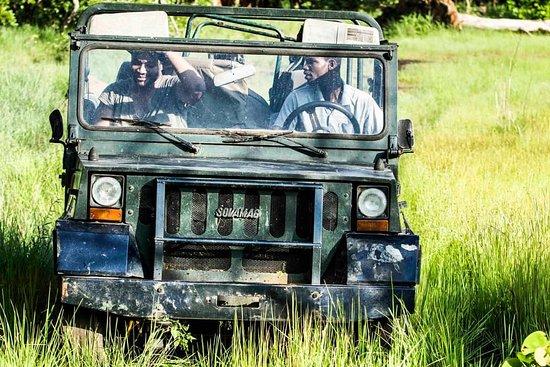 N'zi-Comoe Region, โกตดิวัวร์: Somptueux endroit pour un safari en Côte d'ivoire et dans l'Afrique de l'ouest.  Plus précisement situé à 45 km de Bouaké, les amoureux de la nature s'y donnent rendez- vous alors taguez un(e) ami(e) à qui vous aimeriez faire découvrir cet endroit.