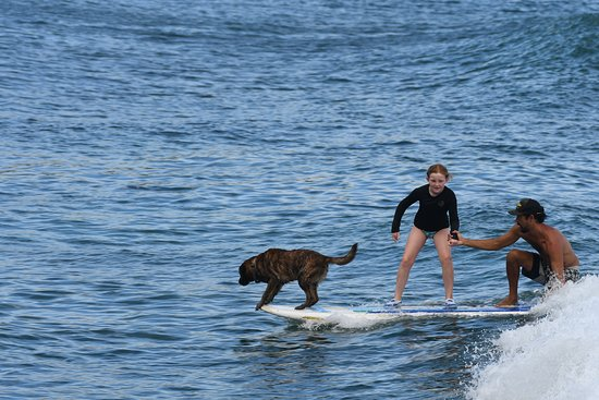 First learning to surf