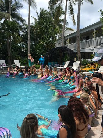 Valokuva: Havana Cabana at Key West