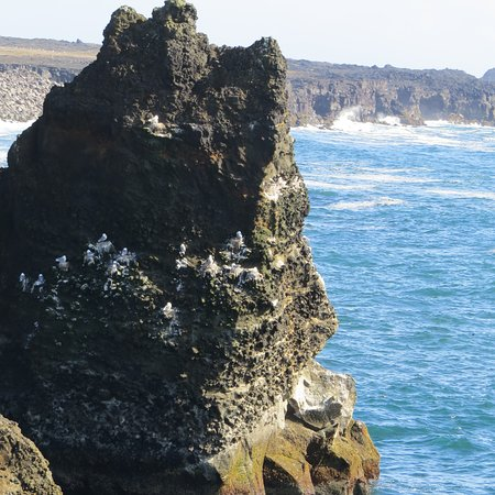 South Coast Full Day Tour by Minibus from Reykjavik: Another one of a thousand pictures I took of beautiful scenery.