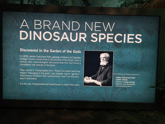Display in the Visitor Center