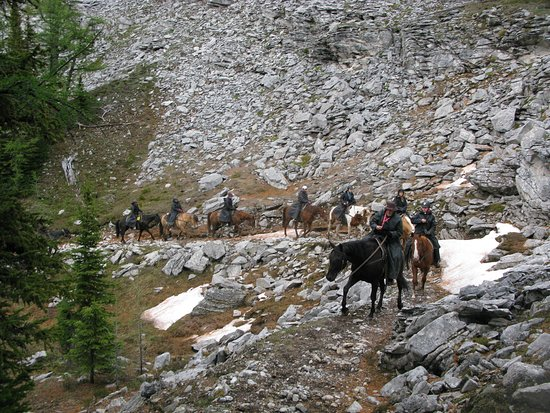 6-Day Halfway Lodge Backcountry Trip by Horseback: Our group heading up the mountain.