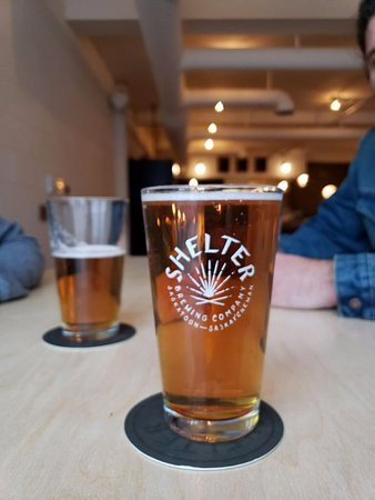 Shelter Brewing Company